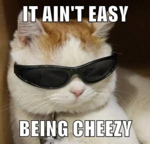 It ain't easy being cheezy